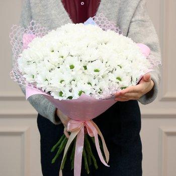 Букет из 25 кустовых хризантем Бакарди