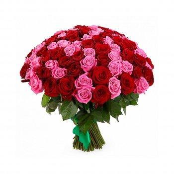 101 красно-розовая роза (50 см)