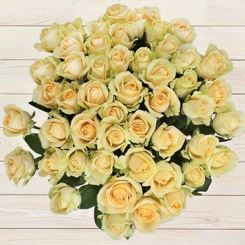 Букет из 25 кремовых роз (70 см)