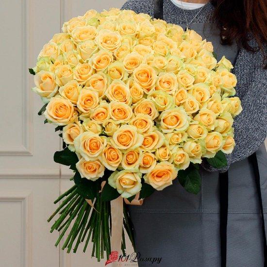 101 кремовая роза (70 см)