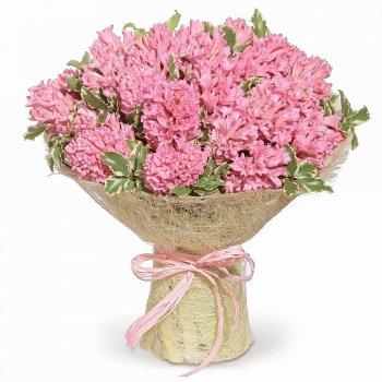25 розовых гиацинтов