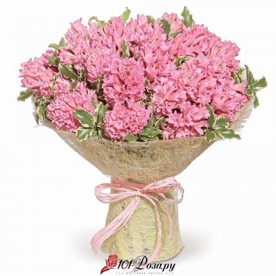 """Букет из 25 розовых гиацинтов """"Афродита"""""""