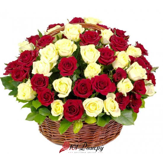 Букет из 51 красно-белых розы в корзине