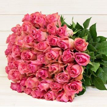 Букет из 25 розовых роз из Эквадора (70 см)