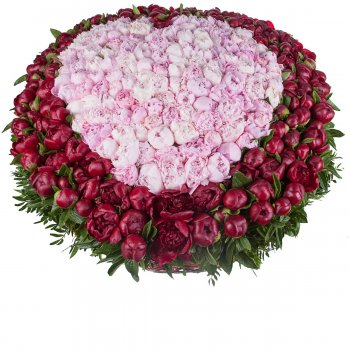 501 красно-розовый пион в корзине