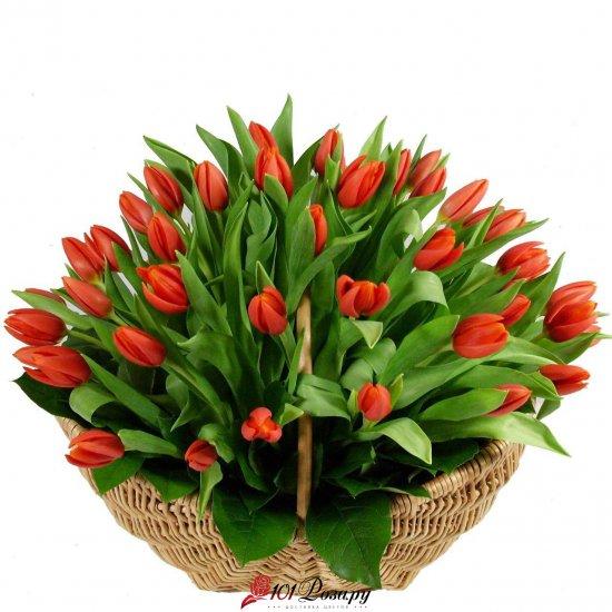 Букет из 55 красных тюльпанов в корзине
