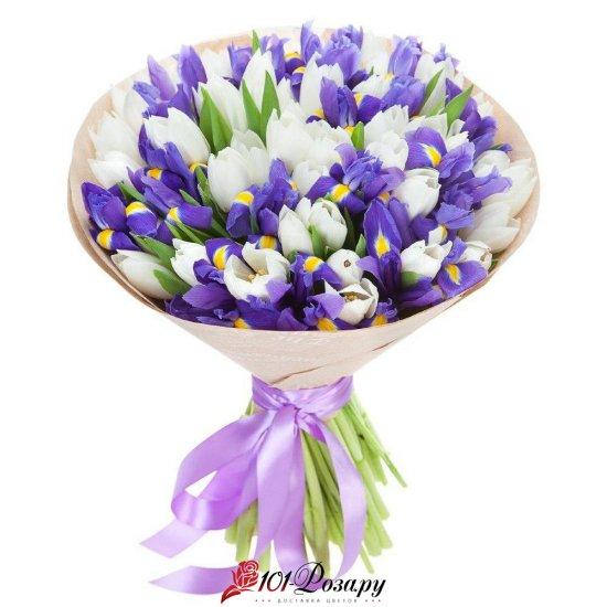 Букет из 51 ирисов с белыми тюльпанами