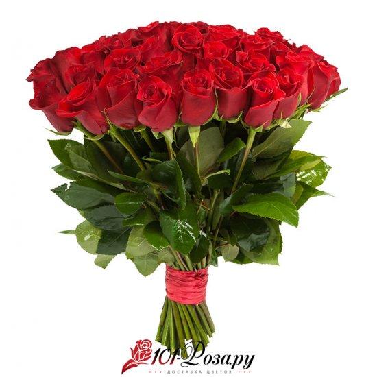 Букет из 51 красной розы Фридом из Эквадора (50 см)