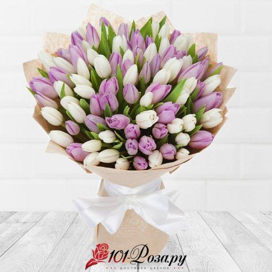 101 белый и фиолетовый тюльпан