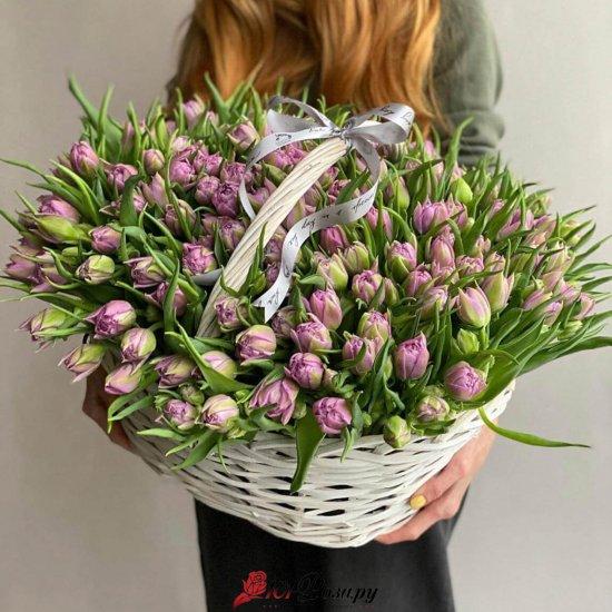 Корзина из 101 фиолетового пионовидного тюльпана