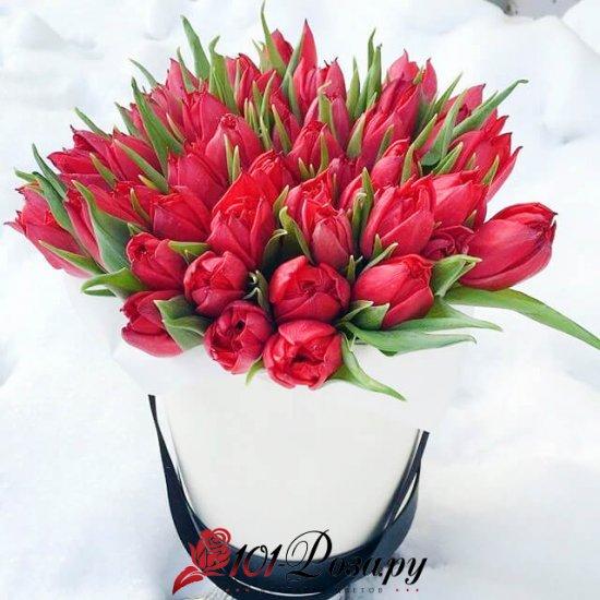 Букет из 35 красных тюльпанов в коробке