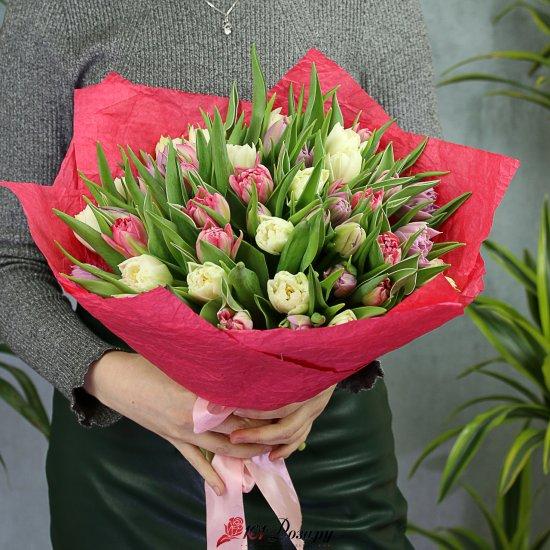 Букет из 51 бело-розового пионовидного тюльпана