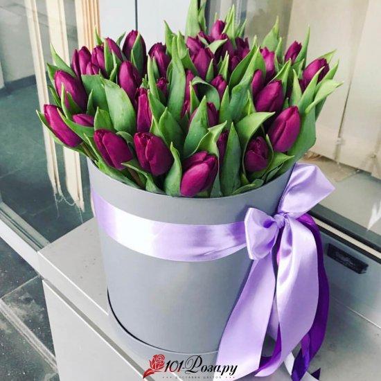 Букет из 51 фиолетового тюльпана в коробке